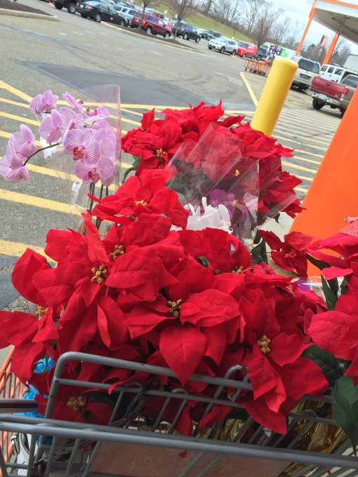 Hoa cho HolidaysatSaiGonPearl